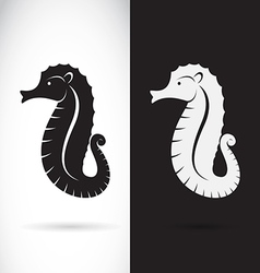 Sea horse design vector