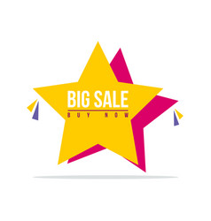 Special offer sale star price label vector