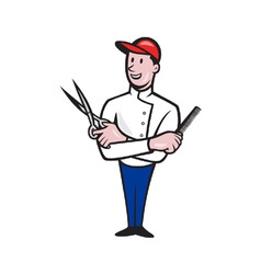 Barber Comb and Scissors Cartoon vector image vector image