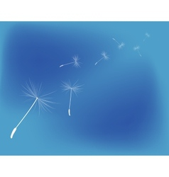 Background dandelion fluff vector