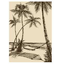 hammock on beach vacation travel tourism vector image
