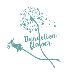 hand drawn sketch of dandelion flower vector image
