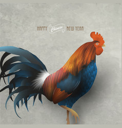 rooster - symbol chinese new year of 2017 vector image
