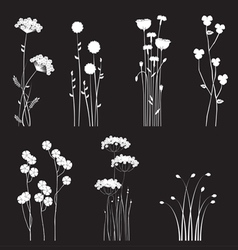 Drawing blooming flowers vector image vector image