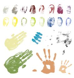 hand and fingers vector image vector image