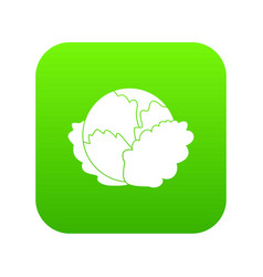 cabbage icon digital green vector image