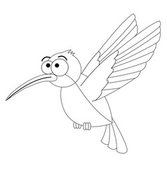 colorless funny cartoon hummingbird vector image