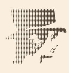 extravagant woman portrait vector image