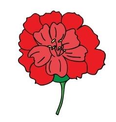 flower spring vector image