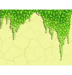 Ivy wall vector