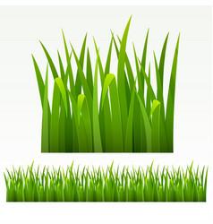 Grass green border vector image vector image