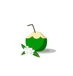 summer drink green coconut on white background vector image vector image