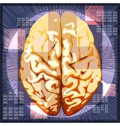 Brain work vector