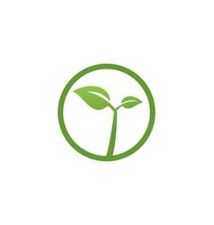 leaf green logo vector image
