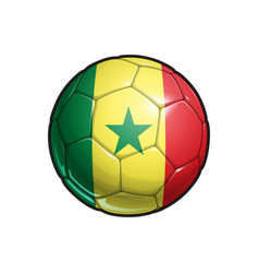 Senegalese flag football - soccer ball vector
