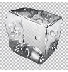 Transparent ice cube vector