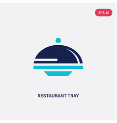 Two color restaurant tray icon from hotel and vector