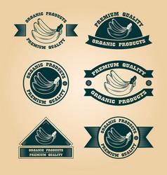 vintage organic harvest stamps set vector image