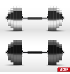 Black and silver classic power dumbbells vector image