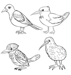 Animal outline for four kinds of birds vector