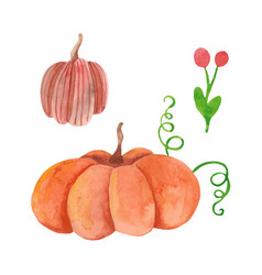 Hand drawn watercolor pumpkins vector