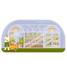 Plant nursery flat composition vector