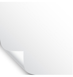 small curled page corner with shadow on white vector image