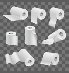 White toilet paper roll and kitchen towels vector