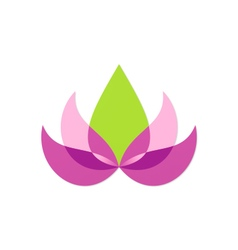 beauty lotus flower abstract logo vector image vector image