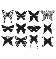 set of butterflies silhouettes vector image