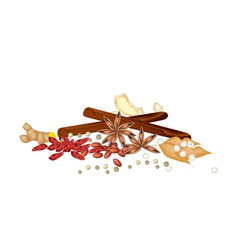 A Stack of Dried Spices on White Background vector