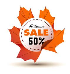 Autumn sale 50 circle maple leaf frame background vector