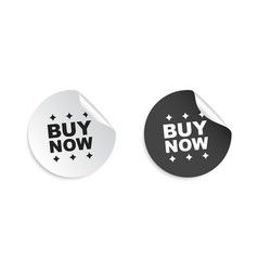 Buy now sticker business sale tag label on white vector