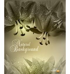 Floral congratulatory background vector