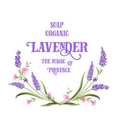 frame lavender flowers vector image