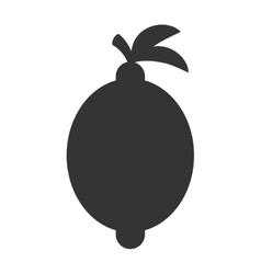 Lemon citrus fruit isolated icon vector