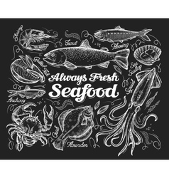 Seafood hand drawn sketch a fish trout vector
