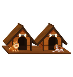 two wooden doghouses with dogs vector image