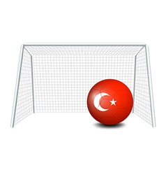 A ball with the Turkey flag vector