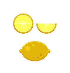 collection of lemons slice isolated on white vector image