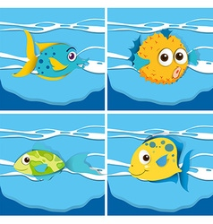 Different kind of fish vector image