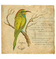 European bee-eater - an hand painted vector