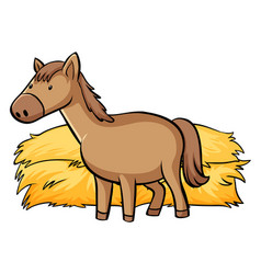 Horse and hay on white background vector