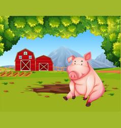 pig at the farmland landscape vector image