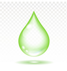 Realistic green transparent drop vector image