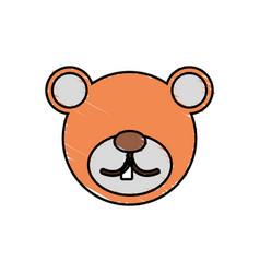 Drawing bear face animal vector