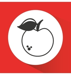 Apple fresh fruit drawing icon vector