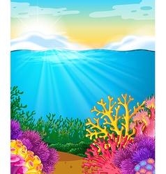 Coral reef under the sea vector image