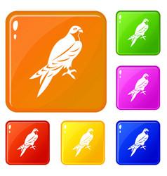 falcon icons set color vector image
