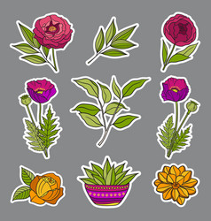 floral hand drawn stickers vector image